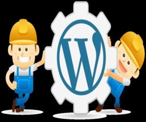 get wordpress help