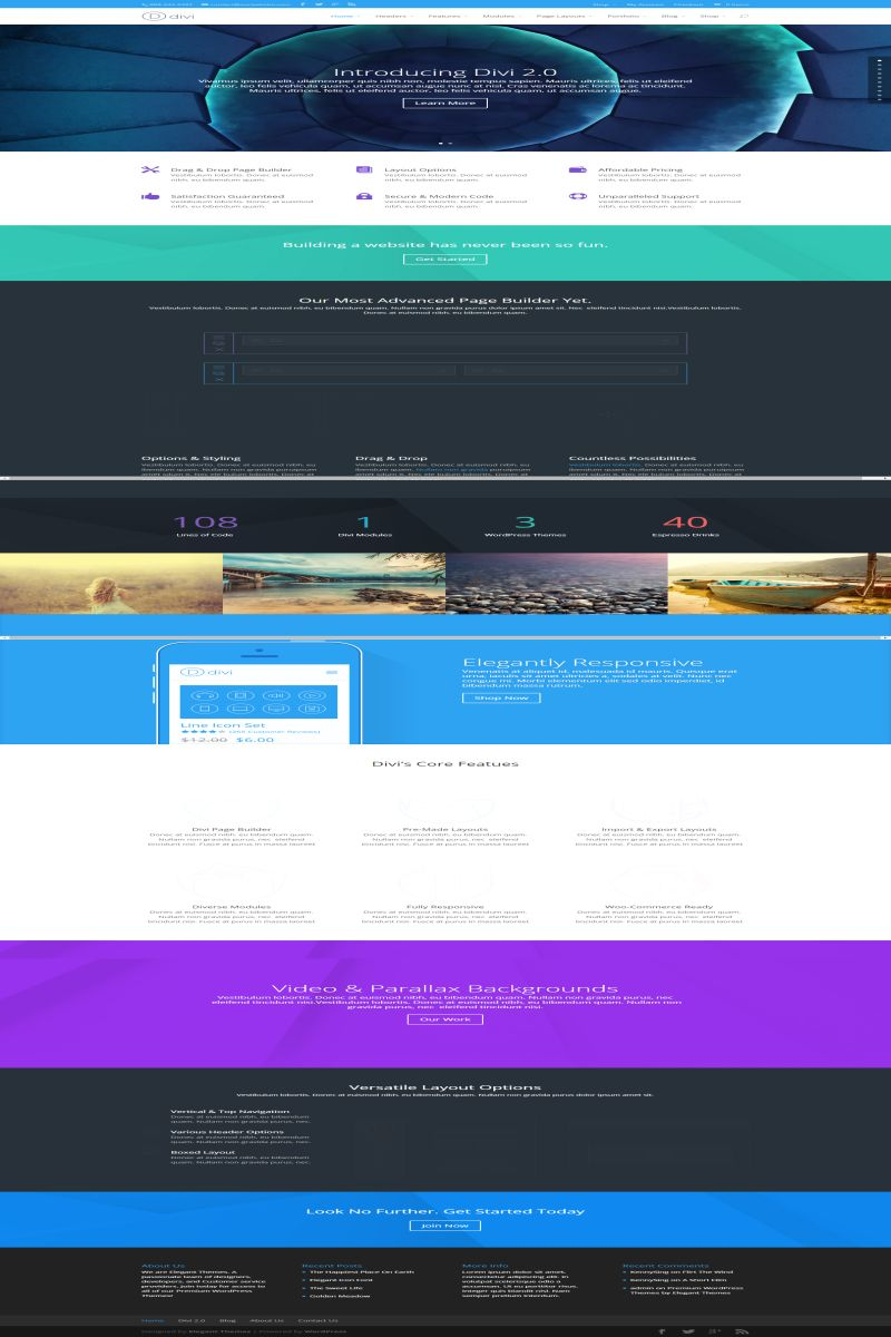 The Divi page builder, from Elegant Themes