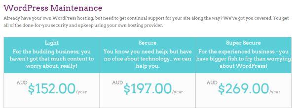 A WordPress Maintenance Bargain?