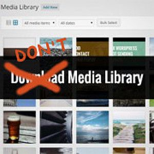 Download The WordPress Media Library